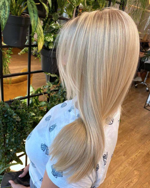 Before & After 💛⭐️🙂 hair Jagoda Lewicka  @jagodowewlosy  @davinespolska  @dowlosow.pl   #koloryzacjawłosów #blondehair #kiece #pieknewlosy #shinyhair