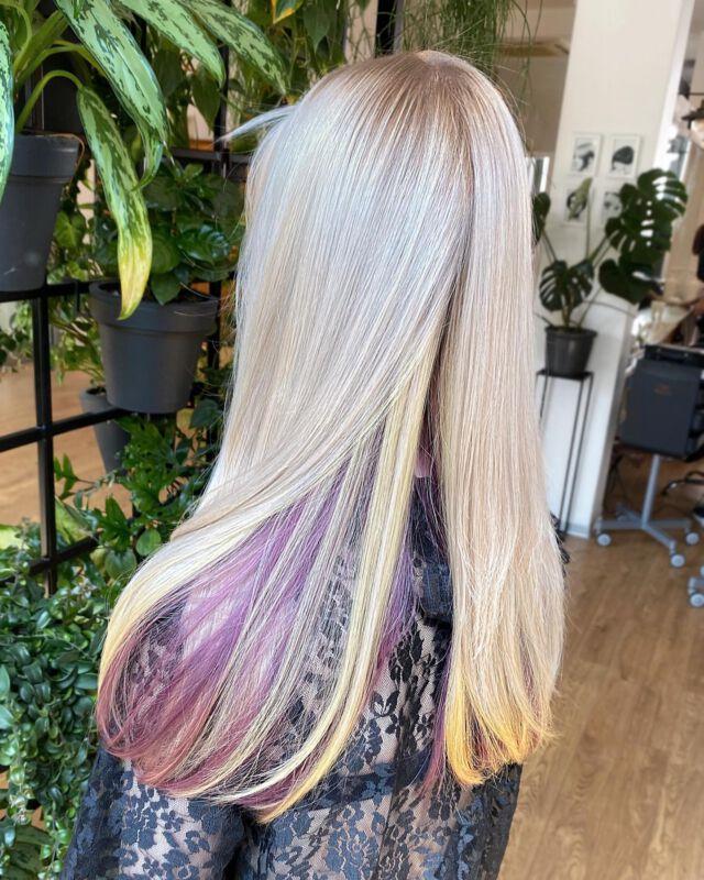 Koloryzacja 🦄 Jagoda Lewicka  @jagodowewlosy  @davinespolska  @dowlosow.pl   #koloryzacjawłosów #fryzjerkielce #hairdresser #blondehair #hairbrained